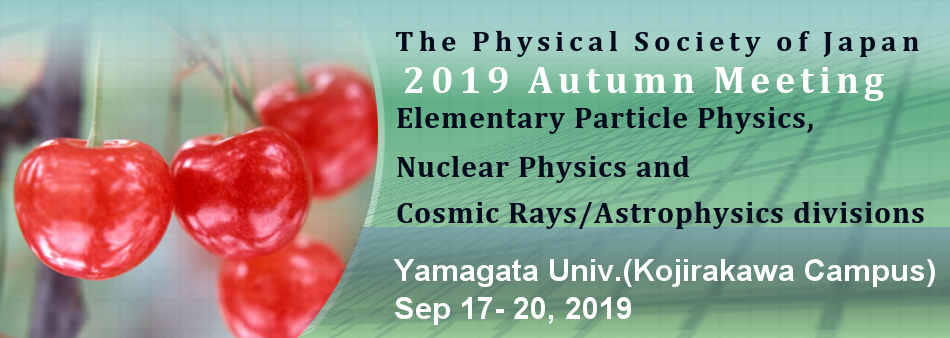 Autumn Meeting 2019 (Elementary Particle Physics,Nuclear Physics and Cosmic Rays/Astrophysics)
